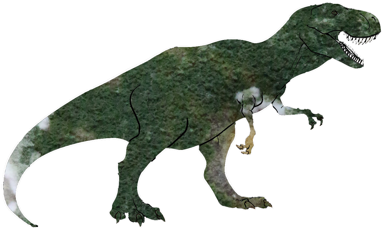 dino-rex-trich-transp